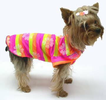 Bright Pink, Yellow, Orange Hawaiian Stripes Girl Shirt