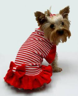 CANDY CANE RED & WHITE STRIPED VELOUR dress