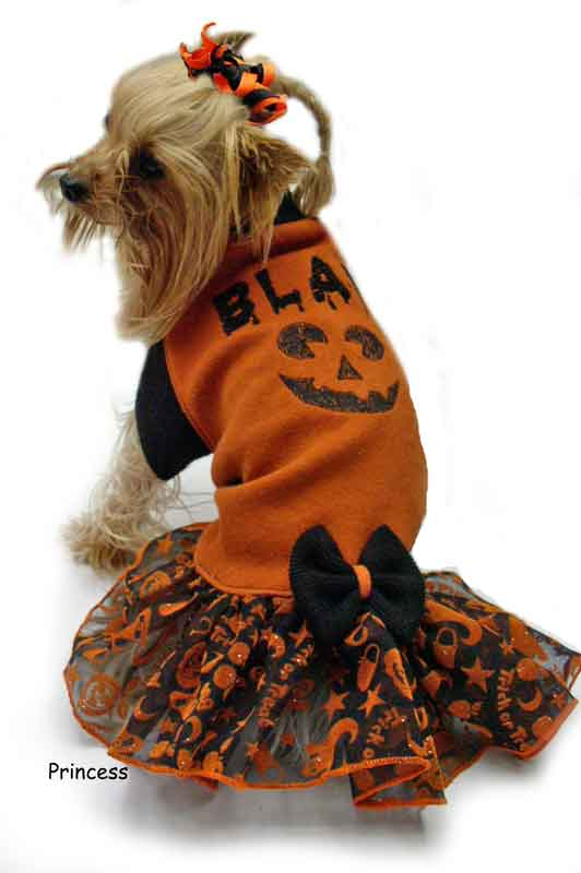 Trick or Treat Dress dog Clothes