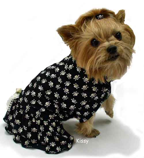 Black with white tiny skulls dog clothes