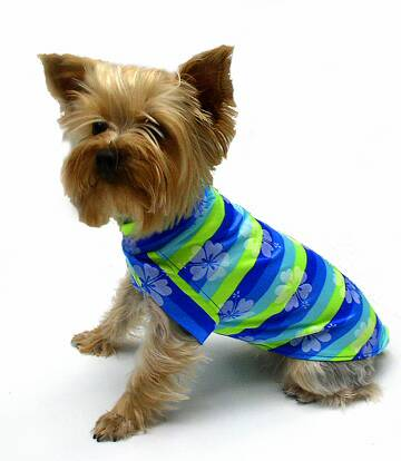 Bright Blues and Lime Green Hawaiian Stripes Girl Shirt