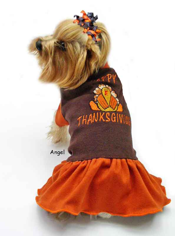 Happy Thanksgiving Dog Clothes