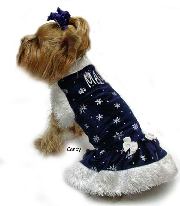 midnight blue snow flakes dog clothes