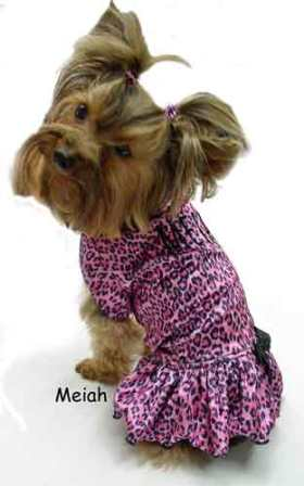 pinmk leopard knit dog clothes