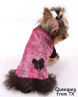 hot pink and shiny velour dots dog clothes